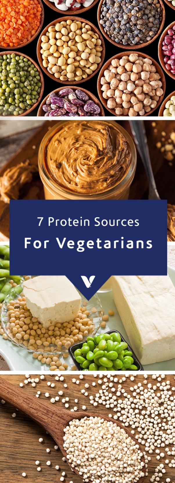 Vegetarian Proteins for Herbivores.jpg