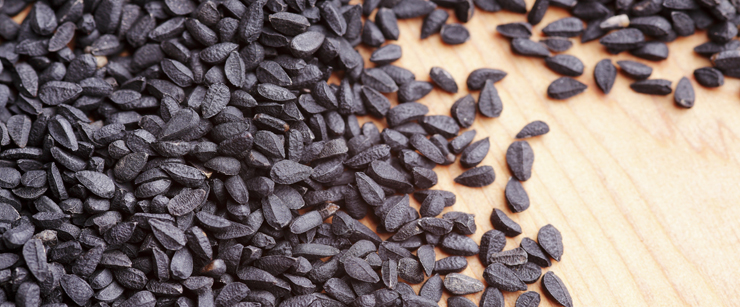 what-is-black-seed-oil