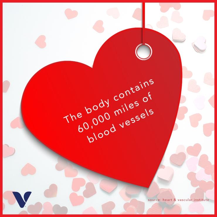 heart-health-fact-3