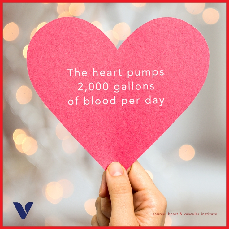 heart-health-fact-4