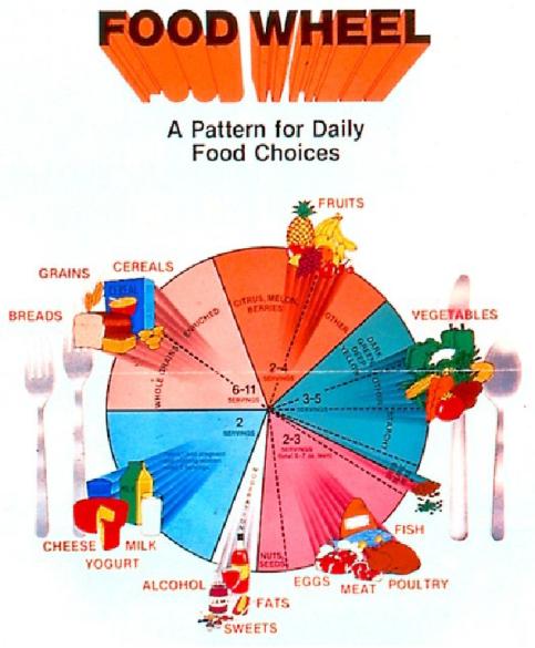 food wheel.fw_.png